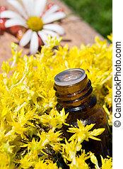 żółte kwiecie, istotny olej