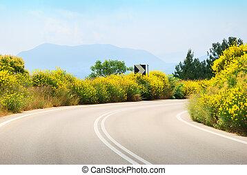 żółty, tarmac, opróżniać, kwiaty, boki, droga