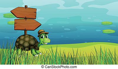 żółw, drewniane deski, strzała
