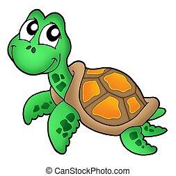 żółw, mały, morze