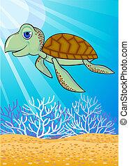 żółw, sprytny