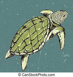 żółw, stylizowany, rys, grunge, morze, foam., ręka, t-shirt, tło, pociągnięty, podpłynięci, style., szkic