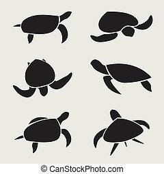 żółw, wektor, grupa