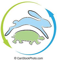 żółw, zając, prąd, cykl