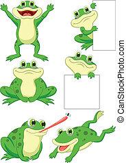 żaba, sprytny, komplet, zbiór, rysunek