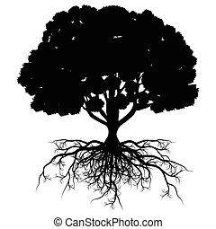 życie, abstrakcyjny, drzewo, stylizowany, formułować, wektor...