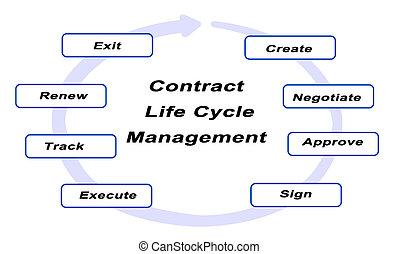 życie, kierownictwo, kontrakt, cykl