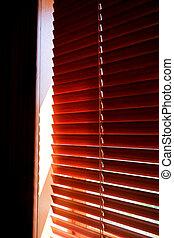 życie pokój, jalousie, światło słoneczne, plastyk, pomarańcza, okno, zaciemnia, projektować, zamknięty, wewnętrzny, słońce-ochrona, poziomy, blinds., morning.