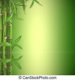 życie, przestrzeń, tekst, wolny, zdrój, bambus, wciąż, kiełbiki