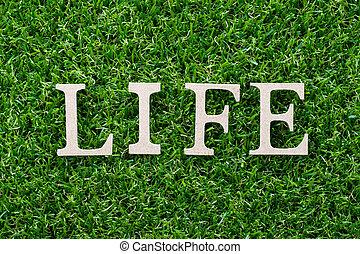 życie, słowo, litera, sztuczny, drewno, zielone tło, trawa