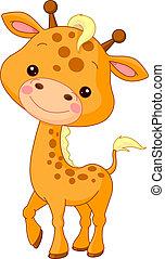 żyrafa, zabawa, zoo.