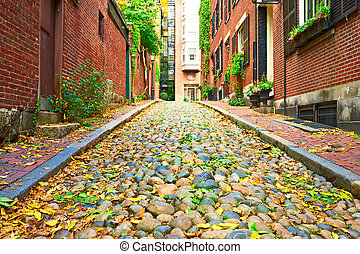 žalud, dějinný, boston, ulice