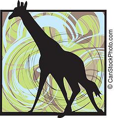 žirafa, vektor, ilustrace