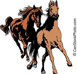 άγρια άλογο