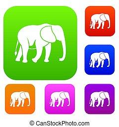 άγριος , ελέφαντας , θέτω , συλλογή