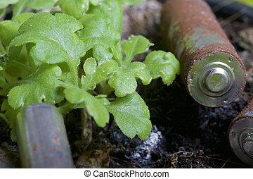 άδικη επίθεση , από , ανάλωση , από , διάφορος , αναπτύσσομαι , και , sizes., αυτοί , ψέμα , αναμμένος άρθρο αγγαρεία , δίπλα στο , ένα , ακμάζω , πράσινο , plant., προστασία του περιβάλλοντος , ανακύκλωση , από , μεταχειρισμένος , batteries.