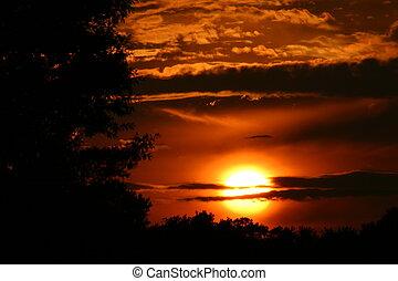 άκαμπτος , ηλιοβασίλεμα