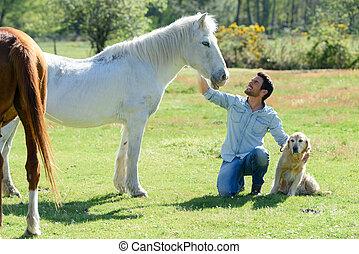 άλογα , πορτραίτο , άντραs