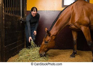 άλογο , σίτιση , γυναίκα