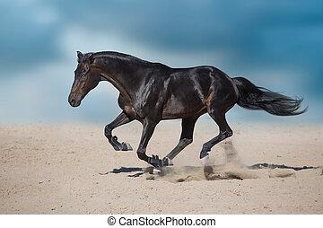 άλογο , τρέξιμο , εγκαταλείπω