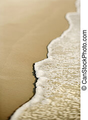 άμμοs , waves.