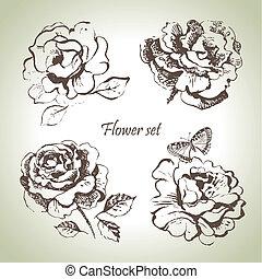 άνθινος , set., χέρι , τριαντάφυλλο , διευκρίνιση , μετοχή του draw
