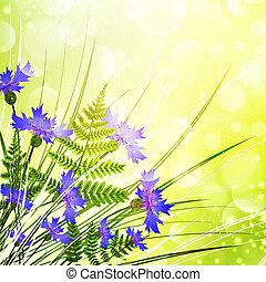άνθος των αραβοσιτοαγρών
