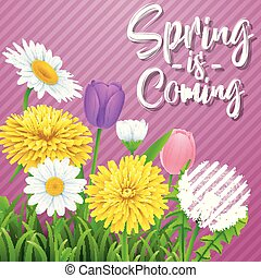άνοιξη , βρίσκομαι , coming., όμορφος , λιβάδι , λουλούδια , επάνω , ραβδωτός , βασιλαρχία φόντο