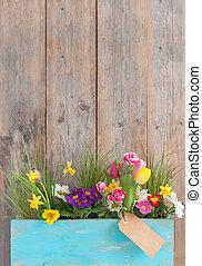 άνοιξη , επιλογή , λουλούδι