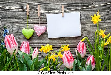 άνοιξη , μήνυμα , λουλούδια , σειρά σχεδιασμού ρούχων , αγάπη