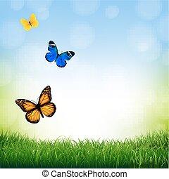 άνοιξη , τοπίο , με , πεταλούδα
