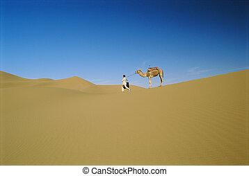 άντραs , μέσα , εγκαταλείπω , με , αγύριστος , καμήλα