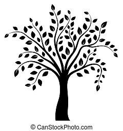 άσπρο , δέντρο , απομονωμένος , φόντο
