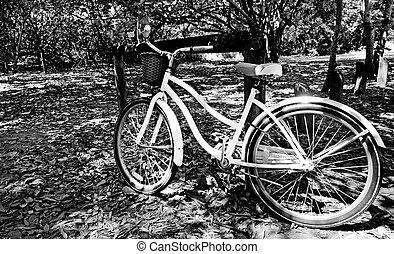 άσπρο , ποδήλατο