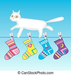 άσπρο , σκοινί για άπλωμα ρούχων , γάτα