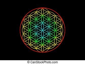 έγχρωμος , balance., yantra, ευφυής , σύμβολο , λουλούδι , λαμπερός , μαύρο , ζωή , mandala , μικροβιοφορέας , ιερός , geometry., αρμονία , φόντο , ουράνιο τόξο , απομονωμένος