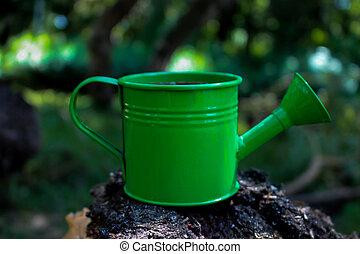 ένα , μικρό , πράσινο , καταβρεχτήρι