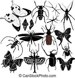 έντομο