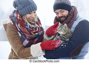 αίσιος ανδρόγυνο , με , γάτα , μέσα , χειμώναs , ημέρα