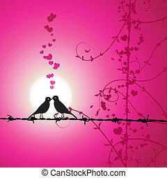 αγάπη , πουλί , παράρτημα , ασπασμός