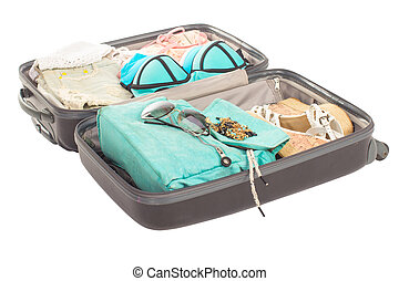 αγέλη , βαλίτσα , γεμάτος , από , διακοπές , items.