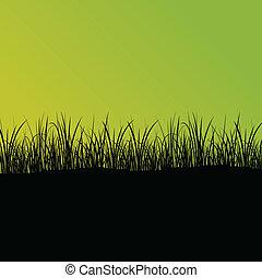 αγίνωτος αγρωστίδες , και , απάτη , λεπτομερής , περίγραμμα , τοπίο , εικόνα , αφαιρώ , φόντο , μικροβιοφορέας
