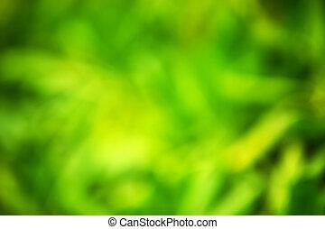 αγίνωτος φύλλο , - , φόντο