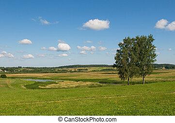 αγροτικός γραφική εξοχική έκταση , δυο , δέντρα