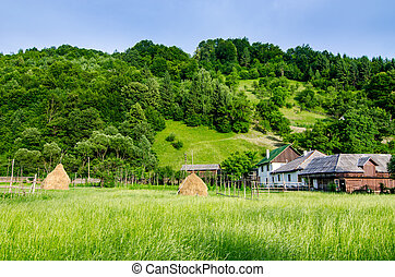 αγροτικός γραφική εξοχική έκταση , μέσα , maramures
