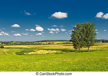 αγροτικός γραφική εξοχική έκταση , με , δυο , δέντρα