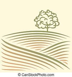 αγροτικός γραφική εξοχική έκταση , με , πεδίο