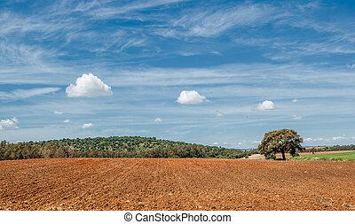 αγροτικός γραφική εξοχική έκταση