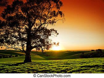 αγροτικός , ηλιοβασίλεμα