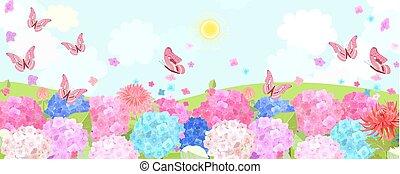 αγρός , υδραγεία , ιπτάμενος , butterflies., αγροτικός , ακμάζων